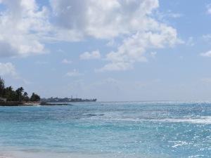 Florida Barbados 007