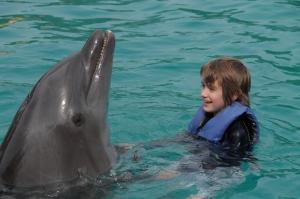 wy dolphin dance