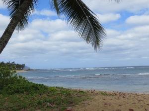 Hawaii 023