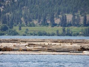 Kamloops, Salmon Arm, Big White 130