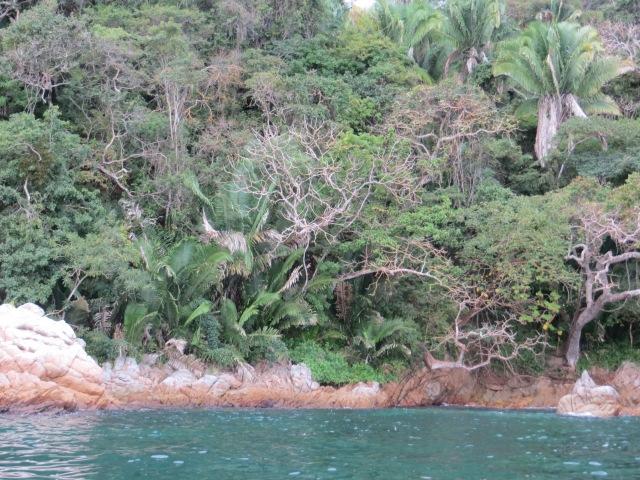 Puerto vallarta 13-14 015