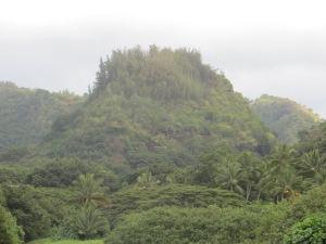 Oahu 008