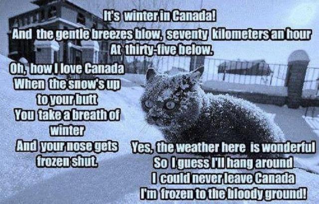 winter poem